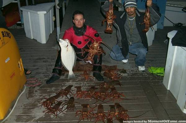 Lobster and halibut