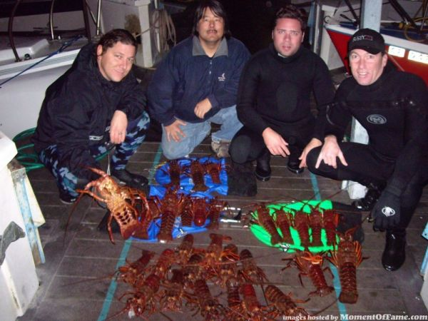 Lobster Diving pics-Pictures