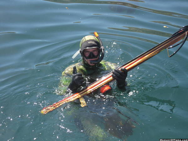Spearfishing Catalina pics-pictures