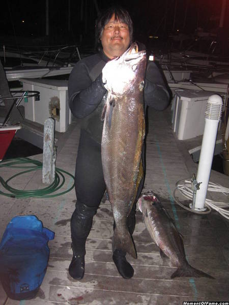 WSB Spearfishing pics pictures