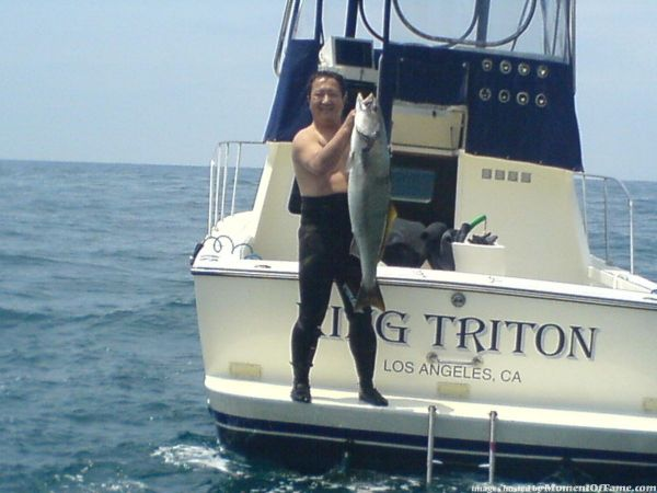 Spearfishing Pictures/Pics