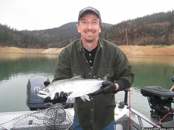 Shasta Lake King Salmon