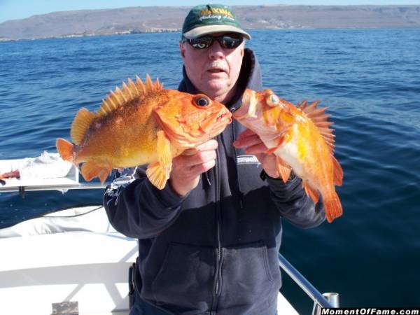 Cory with Starry and Copper Rockfish