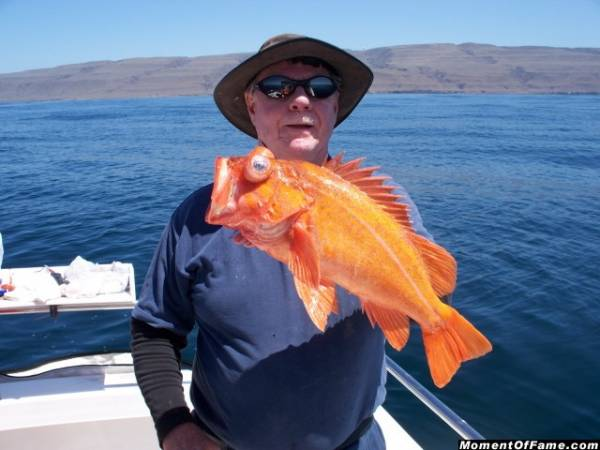 Cory with Vermillion Rockfish