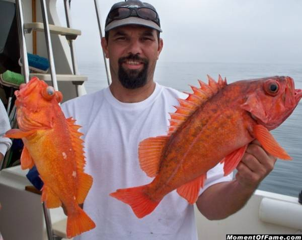 Scott with Red & Santa Maria Rockfish