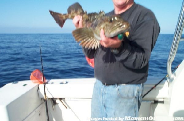 "Cory with 28"" Lingcod"