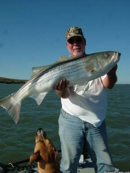 Mark_Wilson_22_Striper_July_27_2007